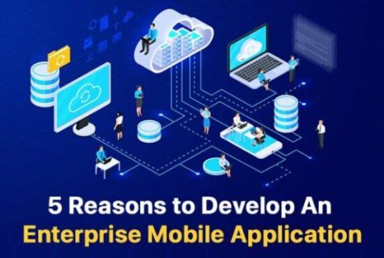 Reasons to Develop An Enterprise Mobile Application