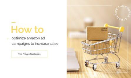 Optimize Amazon Ad Campaigns