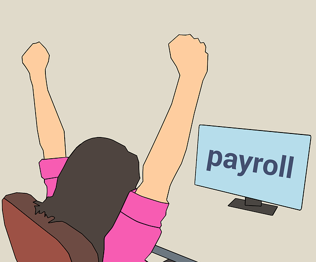 The Importance of Payroll Software for Small Businesses
