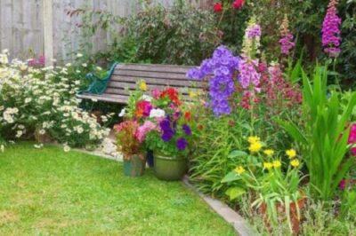 The Best Garden Pot Materials for a Wonderful Garden
