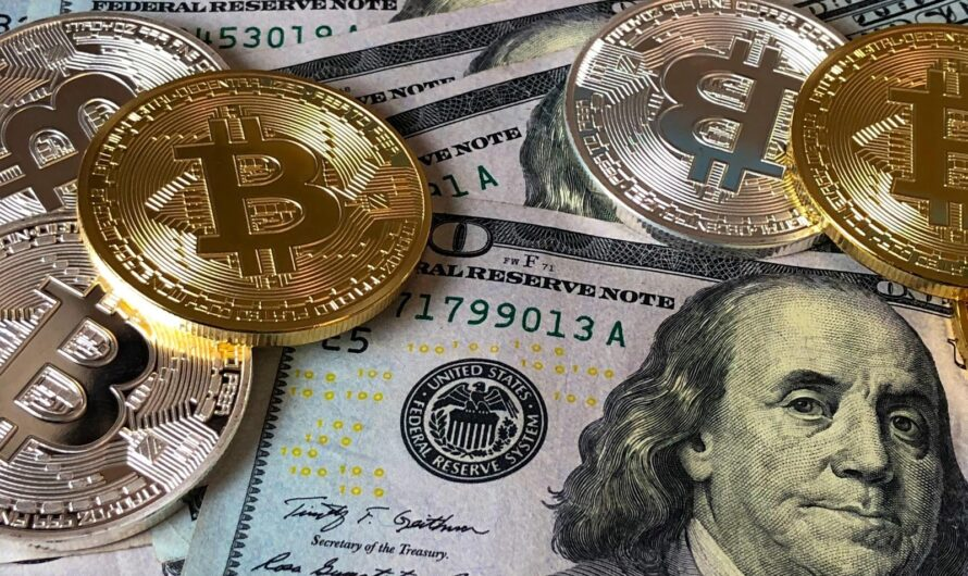 What Crypto to Buy Now: 2021 Tips