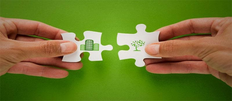 Green Websites are Trending: Can SEO Help?