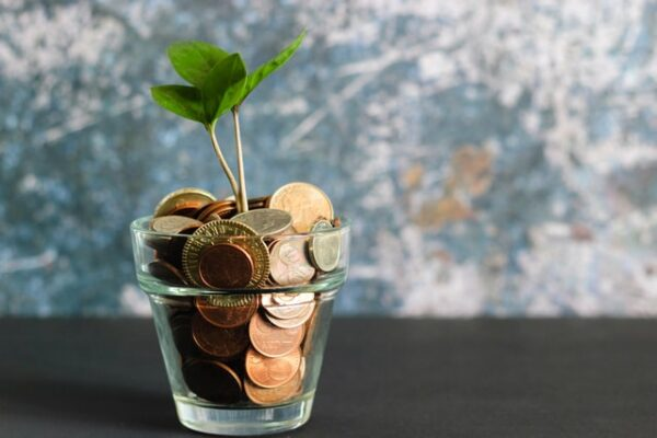 5 Effective Money Management Tips for Newly Self-Employed Workers